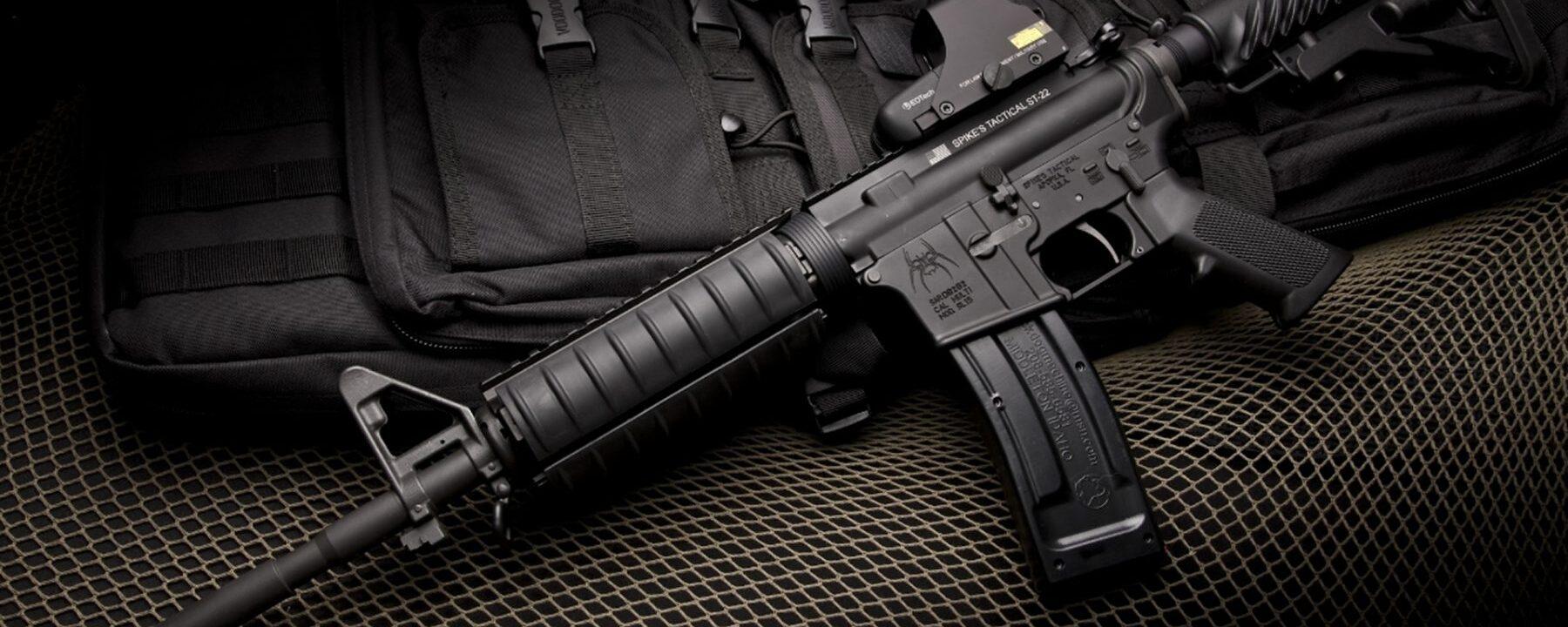 I Pledge Allegiance to the Gun of the…