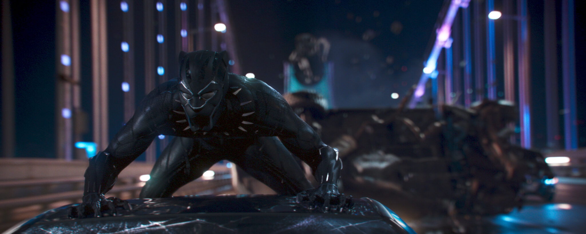 Spirit of the Panther: A Black Panther Review